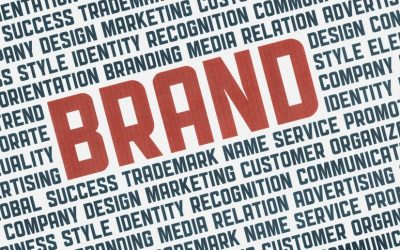 The path to market success: knowledge of brand drivers